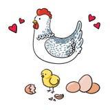 Poule et ses sept oeufs sur un fond blanc Photos libres de droits