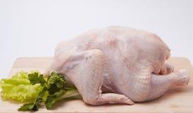 Poule fraîche - grilleur avec des verts Photo stock