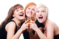 Poule-réception heureuse Image stock