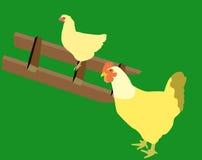 Poules illustration de vecteur