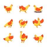 Poules heureuses de personnages de dessin animé réglées Vecteur Photo libre de droits