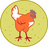 Poulet illustration libre de droits