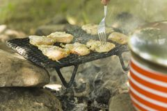 Poulet au-dessus de charbon de bois, un barbecue en nature avec quelques amis dedans Photo libre de droits