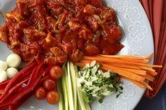 Poulet avec de la sauce Image stock