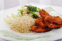 Poulet avec du riz Photo stock