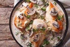 Poulet avec les champignons et le poireau dans un plan rapproché crémeux de sauce Hori photos libres de droits