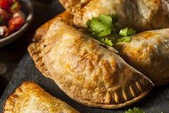 Poulet bourré fait maison Empanadas Images stock
