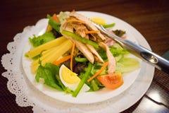 Poulet Caesar Salad images libres de droits