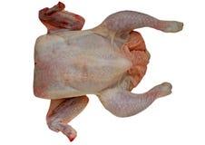 poulet cru Photos stock
