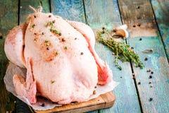 Poulet cru organique avec le thym, les poivrons et l'ail sur une table rustique image libre de droits