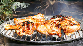 Poulet de barbecue Photo stock