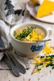 Poulet de cheddar de brocoli et soupe à boulette photographie stock
