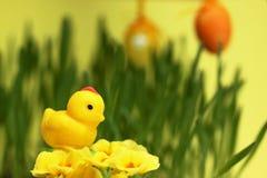 Poulet de massepain, décoration de Pâques Image stock