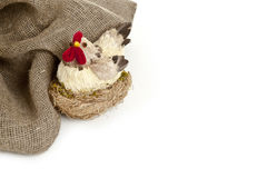 Poulet de Pâques à l'arrière-plan de nid Photos libres de droits