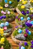Poulet de Pâques photographie stock libre de droits