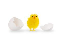 Poulet de Pâques avec des coquilles d'oeufs blancs Images libres de droits