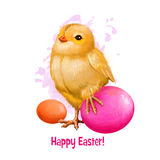 Poulet de Pâques avec des oeufs de vacances sur le blanc Petit symbole traditionnel de poule du christianisme Joyeuses Pâques num Photos stock