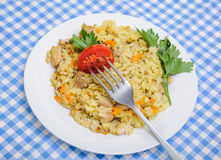 Poulet de pilaf en plus de quinoa Photographie stock libre de droits