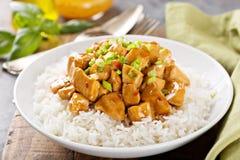 Poulet doux et aigre avec du riz image stock