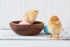 Poulet et oeuf de pâques sur le fond en bois blanc images libres de droits
