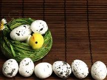 Poulet et oeufs de Pâques dans le nid Photographie stock libre de droits