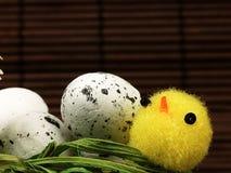 Poulet et oeufs de Pâques dans le nid Photo libre de droits
