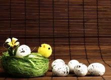 Poulet et oeufs de Pâques dans le nid Image libre de droits