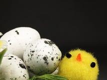 Poulet et oeufs de Pâques dans le nid Images libres de droits