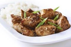 Poulet et riz dans le style asiatique images stock