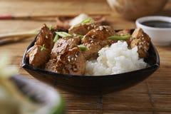 Poulet et riz dans le style asiatique photographie stock