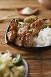 Poulet et riz dans le style asiatique images libres de droits