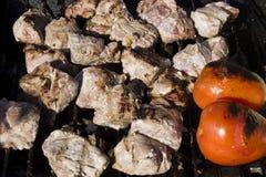 Poulet et tomates sur un gril de charbon de bois Image stock