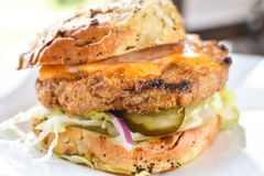 Poulet Fried Turkey Burger Photo libre de droits