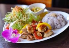 Poulet frit avec du riz et des légumes Images libres de droits