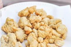 Poulet frit, poulet croustillant Photo stock