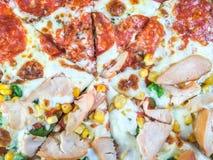 Poulet fumé et pizza de salami Photo libre de droits
