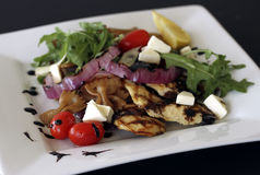 Poulet grillé avec de la salade sur le plat Image libre de droits