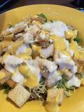 Poulet grillé Caesar Salad avec l'habillage Image stock