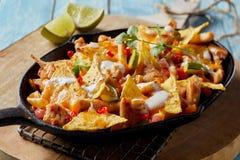 Poulet mexicain épicé avec les nachos et la crème images libres de droits