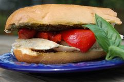 Poulet, Pesto, et sandwich rôti à poivron rouge Photographie stock