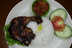 Poulet r?ti d?licieux d'un plat avec de la sauce chili photo stock