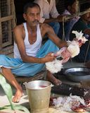 Poulets à vendre à un marché en Inde images libres de droits