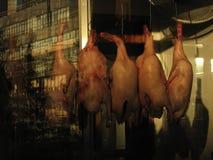 Poulets accrochant dans la ville NYC de la Chine Photos libres de droits