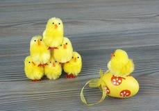 Poulets de Pâques Image stock