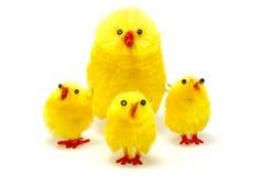 Poulets de Pâques photographie stock libre de droits