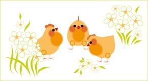Poulets et fleurs Image libre de droits