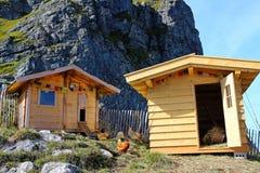 Poulets fermiers dans le paysage montagneux photo libre de droits