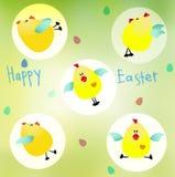 Poulets mignons de Pâques Photos stock
