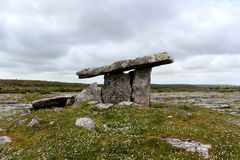 Poulnabrone dolmen in the Burren, Ireland. Poulnabrone dolmen is a portal tomb in the Burren, County Clare, Ireland Royalty Free Stock Image