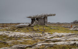 Poulnabrone Dolmen in Ireland. Poulnabrone Dolmen burial chamber near Burren in Eire on a grey cloudy day Stock Image